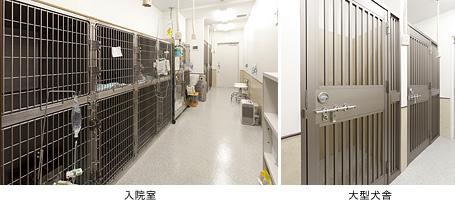 オオジ動物病院 処置室 入院室・隔離室